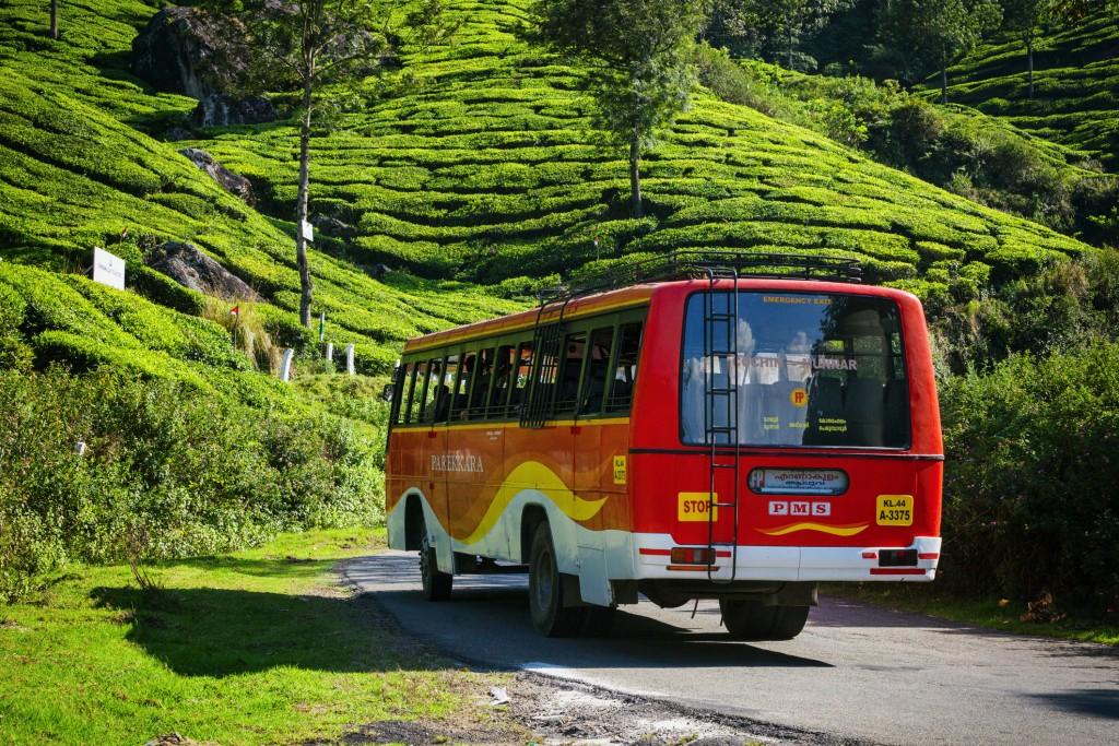 Tour Bus at Tea Plantations in Munnar, India