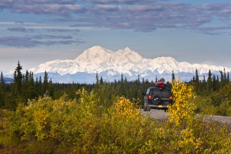 Denali Highway, Interior Alaska, view of east and south face of Mt. McKinley with fall colors near western end close to Cantwell