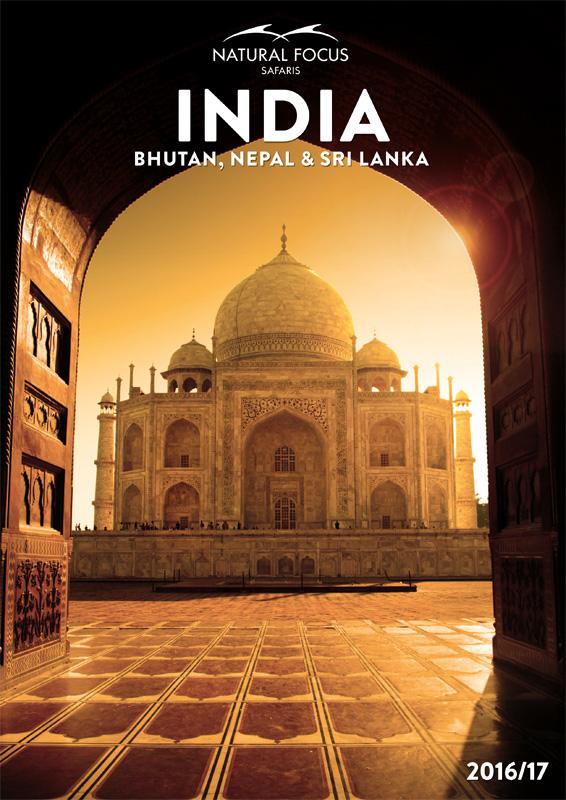 India-Cover-2016-17-web