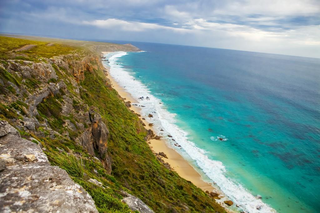 kangaroo-island-aat-kings