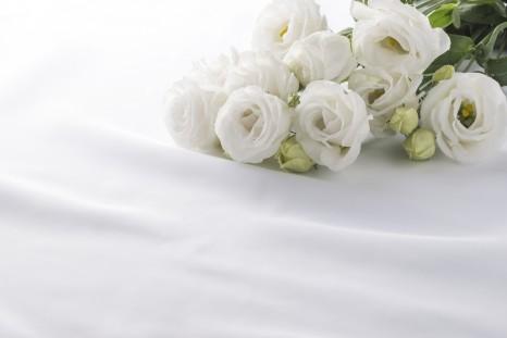 White bellflowers are on white silk