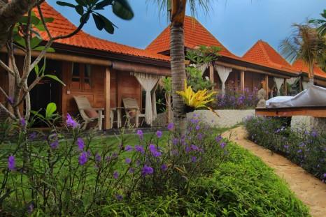 Yoga Searcher Bali 1