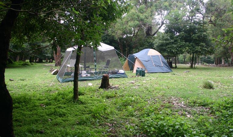 bittangabee-campground-01