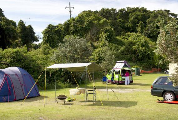 27+ Seal Rock Camp Ground  Pictures