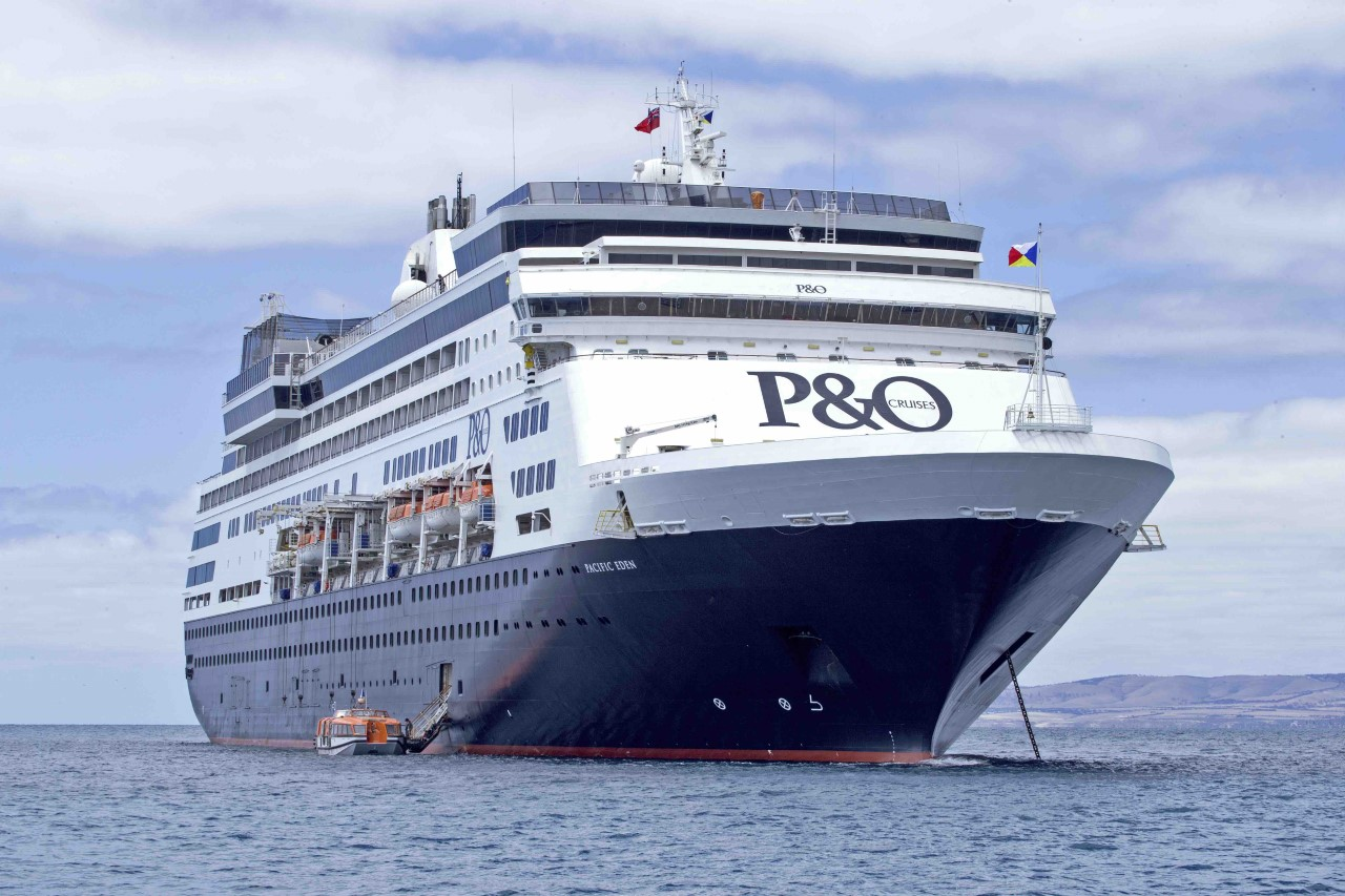 The Big Fat Cruise Wrap Travel Weekly