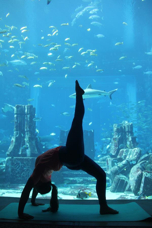 Yoga in The Lost Chambers Aquarium - Atlantis The Palm 8 (002)