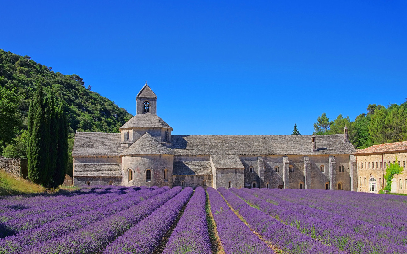 France_Luberon_Senanque_LavenderField_shutterstock_110946863smal