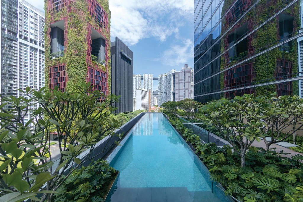 Sofitel Singapore City Centre - Pool