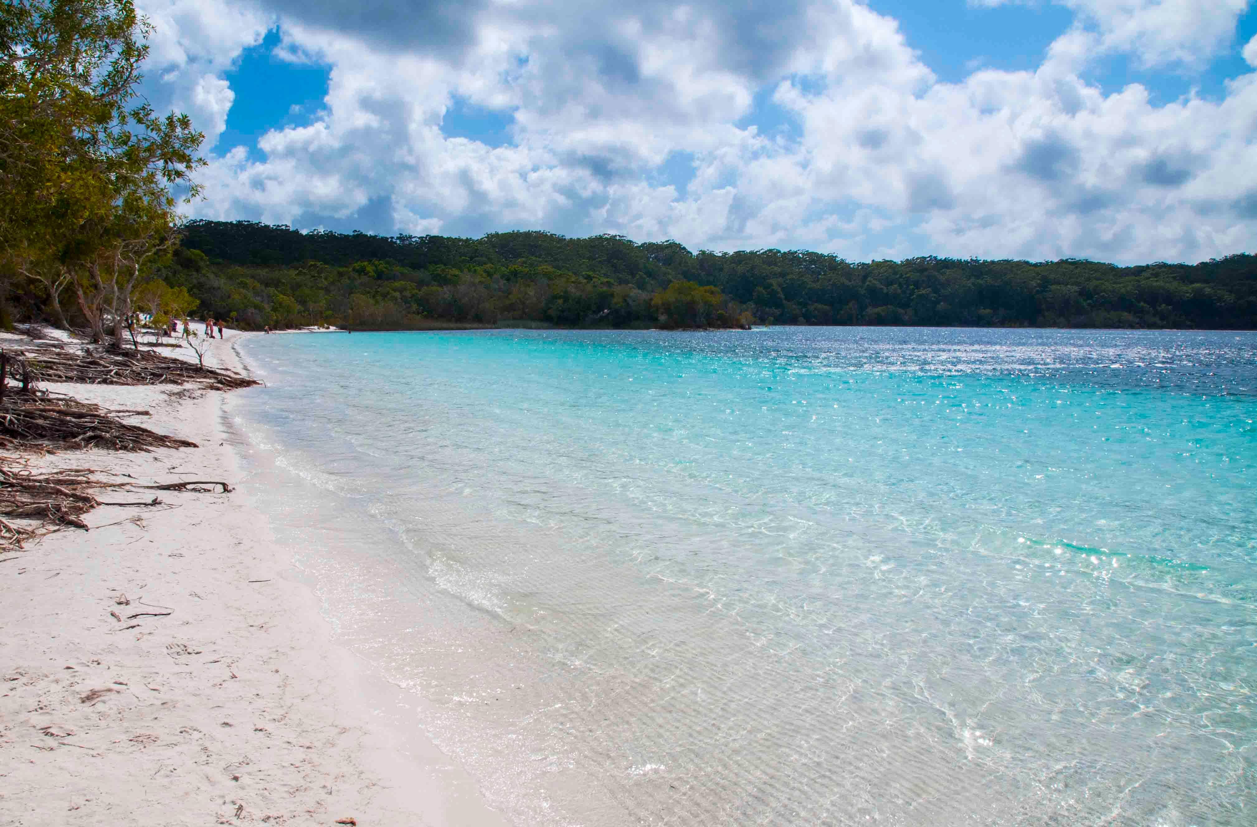 5b. Fraser Islands Lake McKenzie