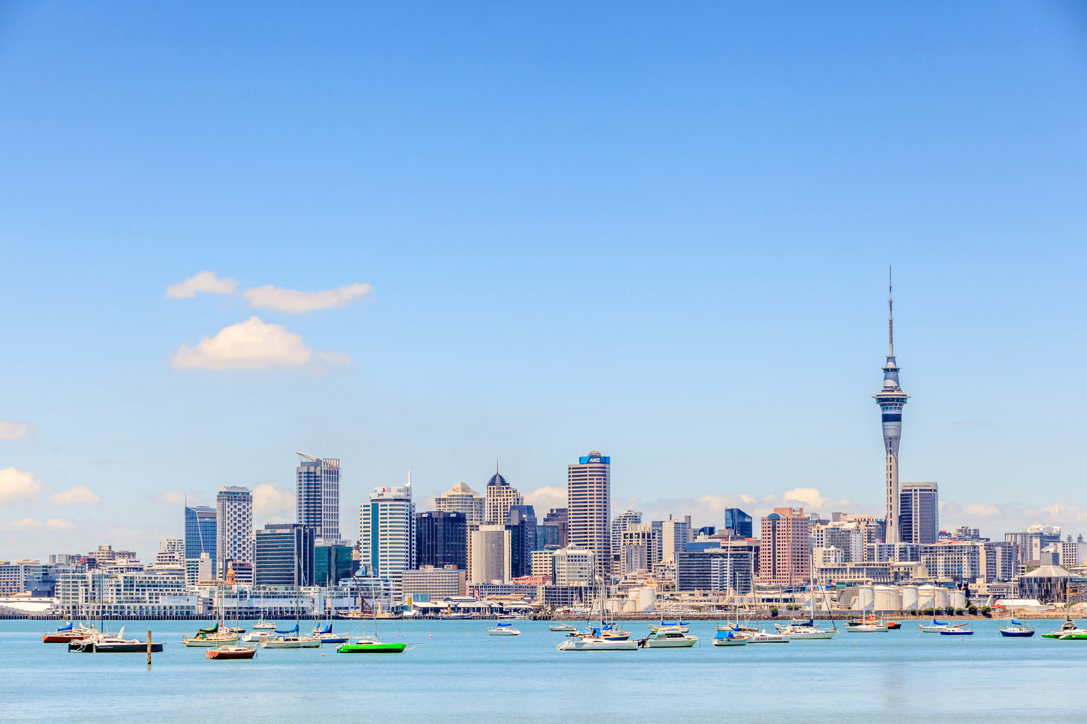 Auckland, New Zealand- December 12, 2013. Cityscape of Auckland sky tower.