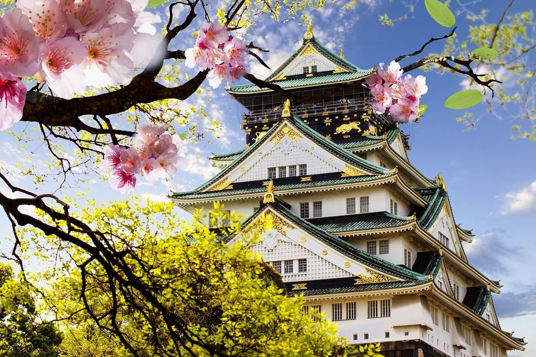 Japan Sakura lowres