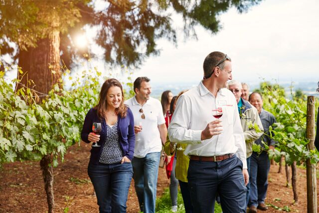 RS12241_LAYERS_PORTLAND_VINYARD-7881-hpr_preview.jpeg