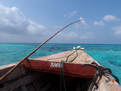 Zanzibar- Copyright - Image Credit- Caitlin Adcock