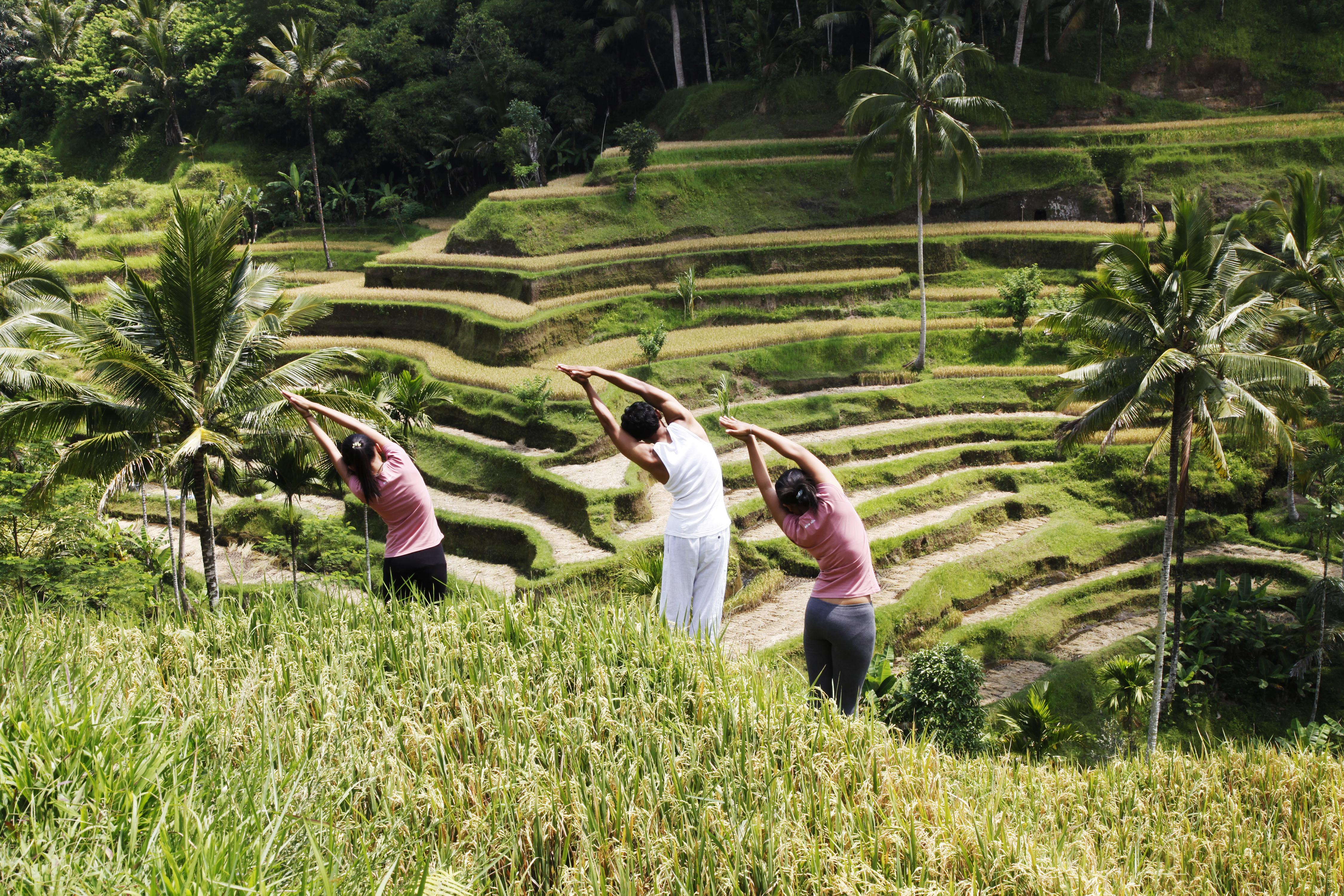 Yoga at a Rice Paddy