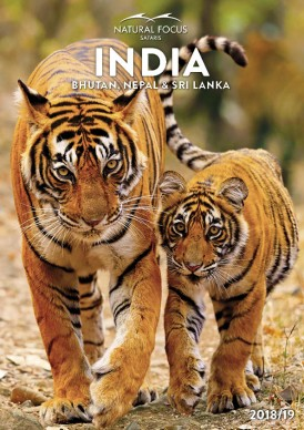 india_brochure_cover
