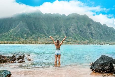 Aloha Apprentice hero image