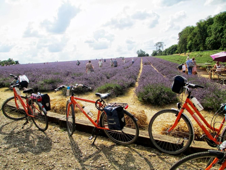Paris to London Cycle