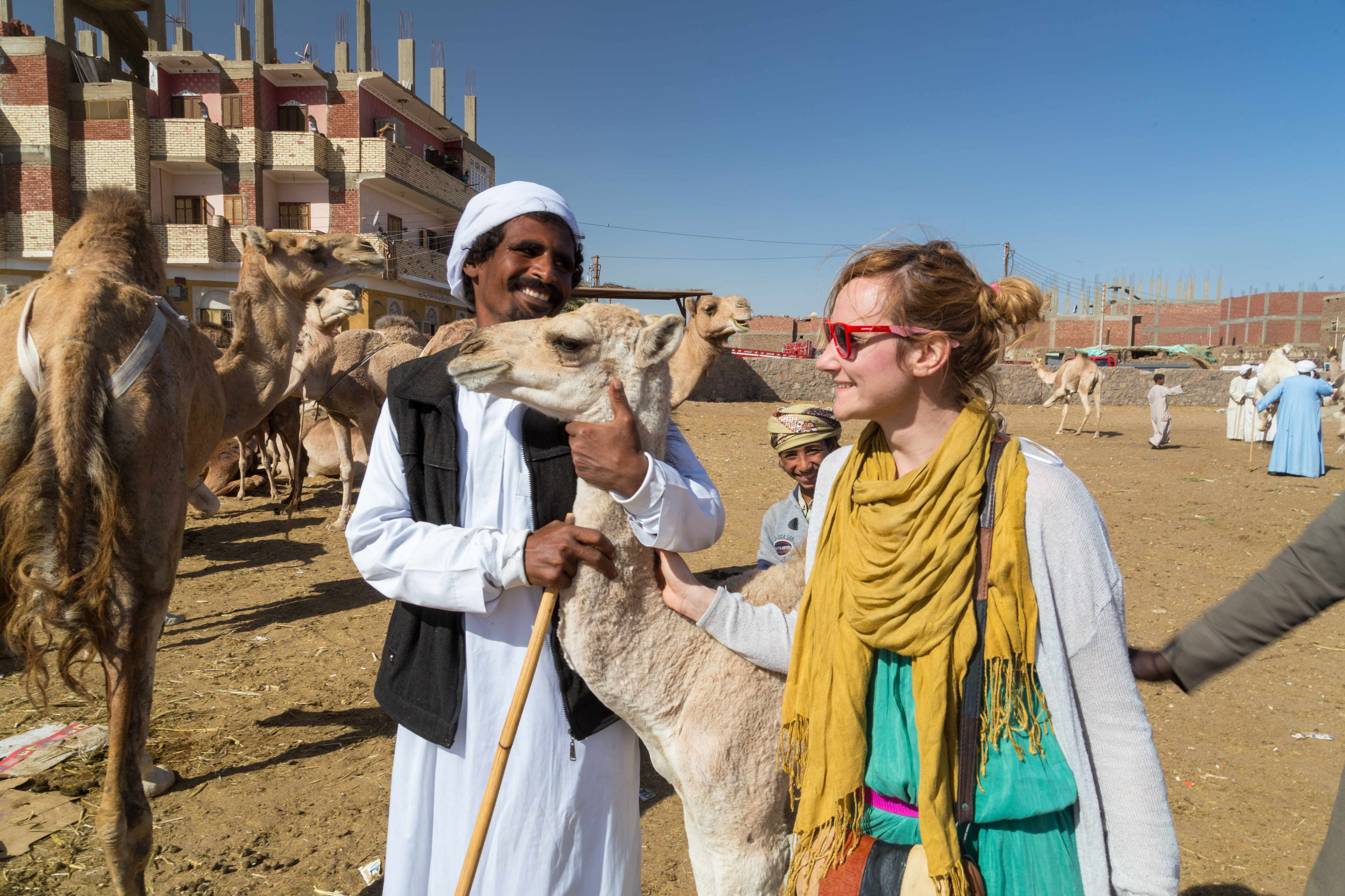 Tourist and local camel salesmen at camel market.