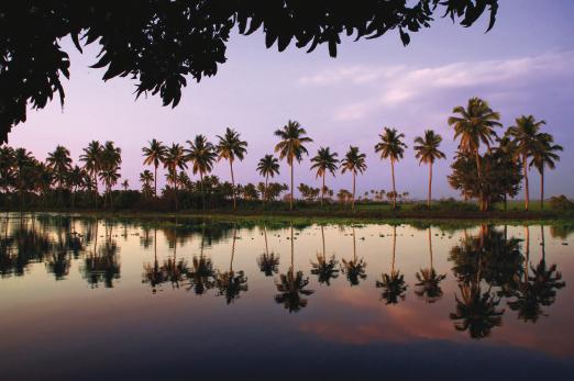 Backwater_Reflections_India-small