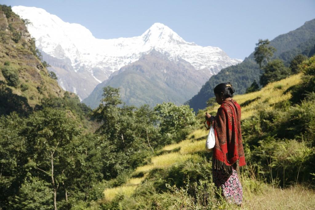 Peregrine Adventures-nepal_kathmandu_mountains-woman-view