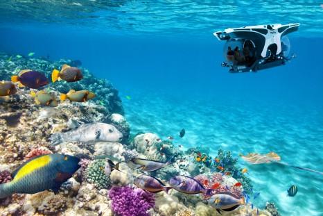 Submarine Caribbean (1)