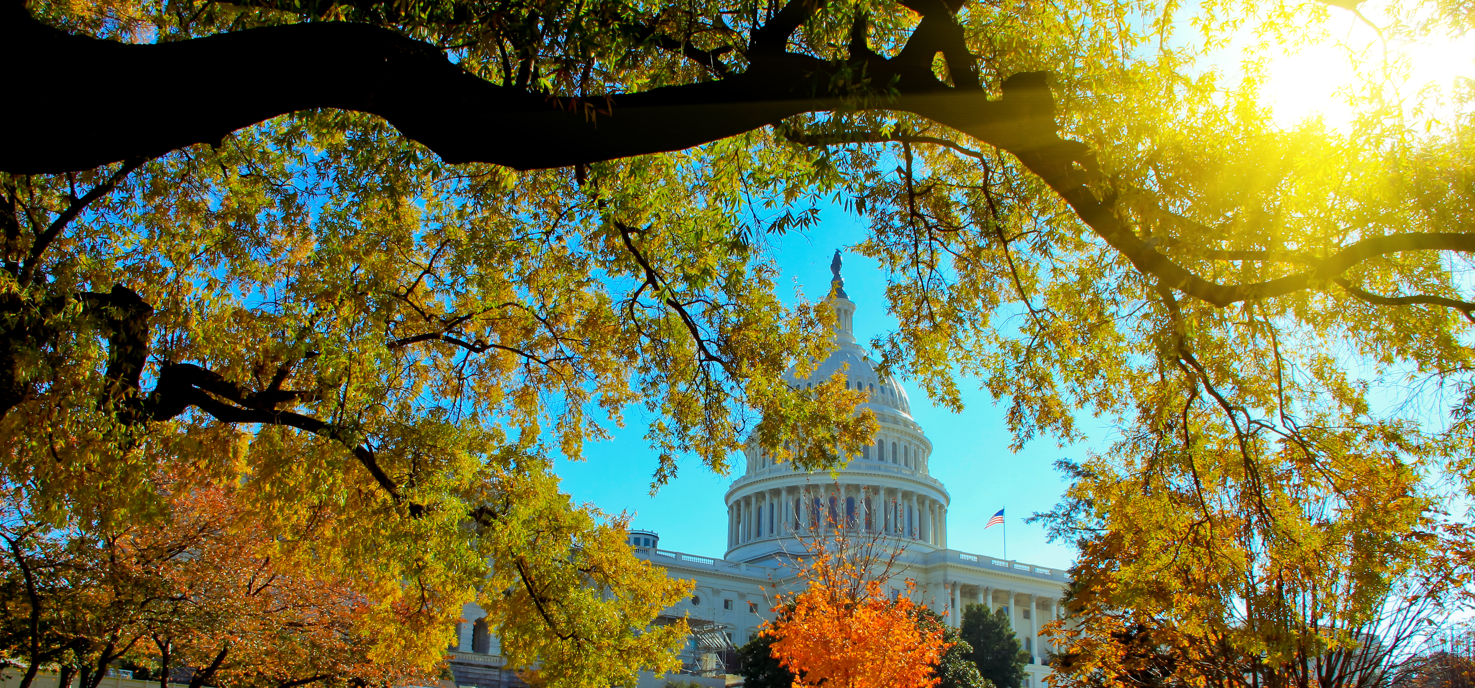 US Capital Building with sunlight in Autumn, Washington, DC.