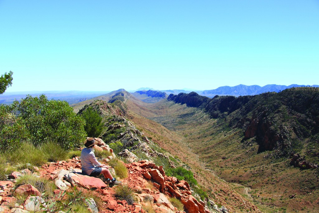 Larapinta_Trail-_Northern_Territory-_Australia.-original-[39564]