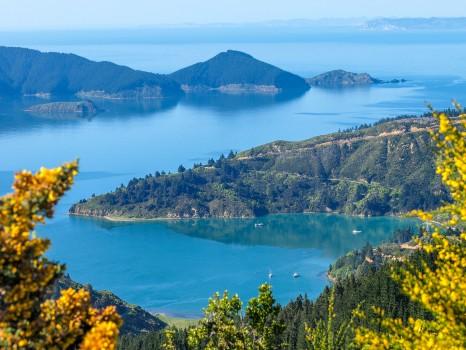 Picton, New Zealand, coast, scenic