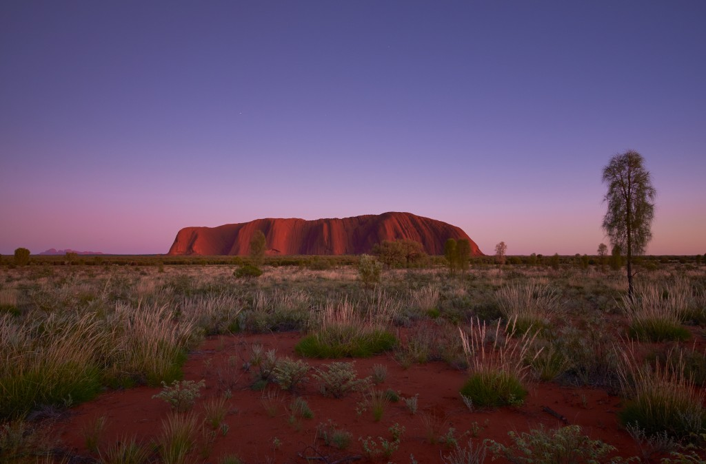 The Approaching Dawn And Uluru