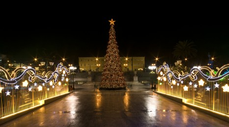 """""""Big christmas tree on Syntagma Square, in Athens, Greece. On the background is the Parliament Building."""""""