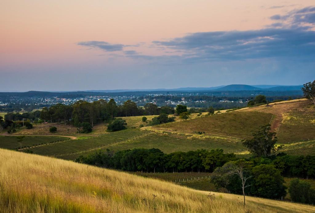 Hunter Valley Vine Yards
