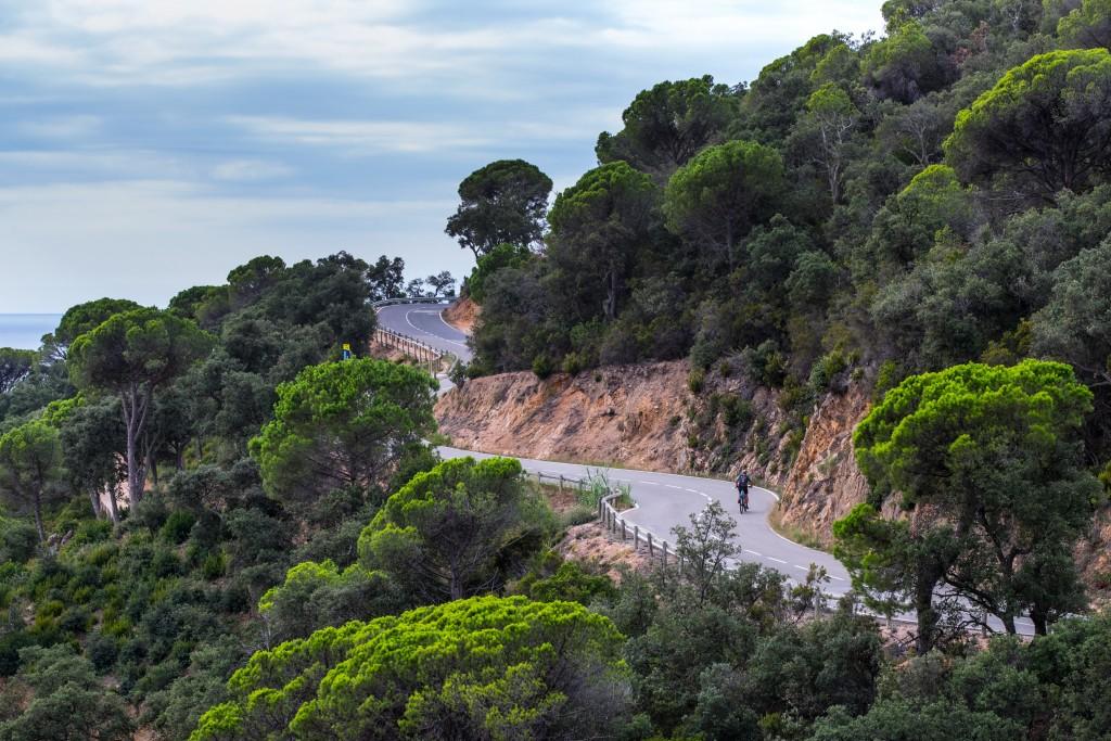 Viva Italia 4 - Courtesy of TDA Global Cycling