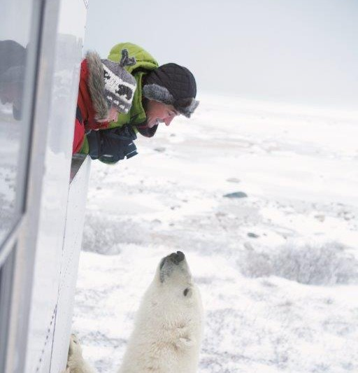 Adventure World Travel - Classic Polar Bear Photo Adventure