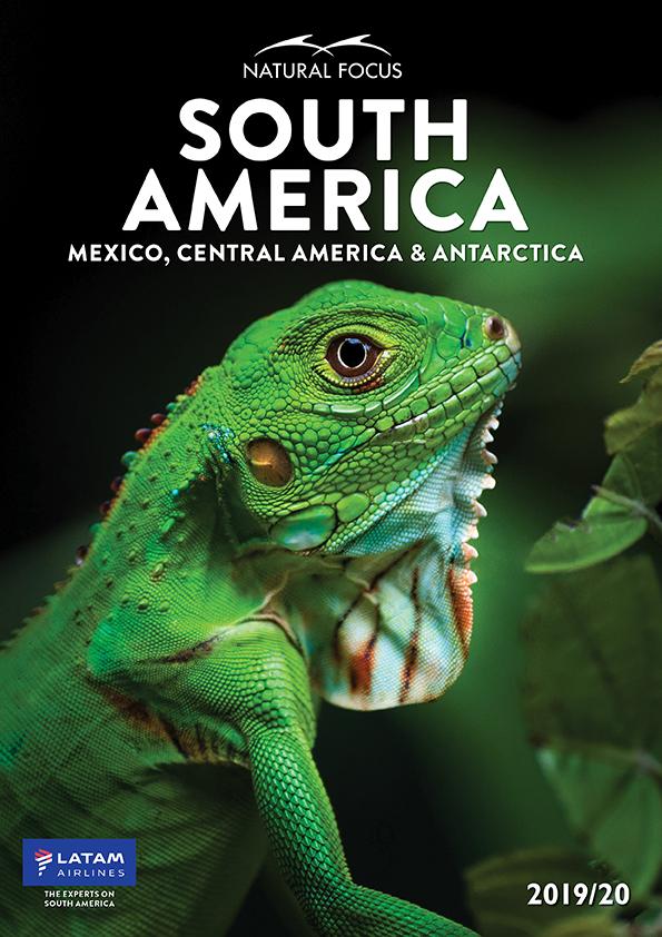 South America 2019-20_cover