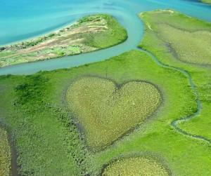 Coeur de Voh vu d'ULM - Nouvelle Calédonie