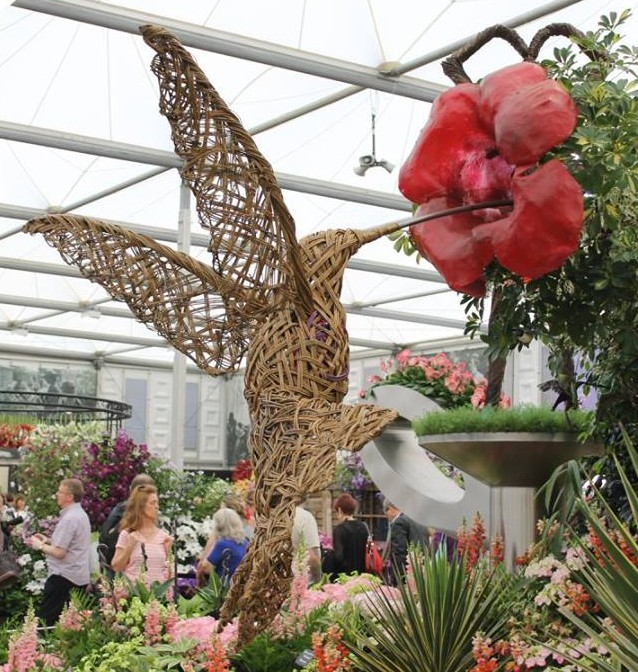 Insight Vacations, Chelsea Flower Show Humming bird