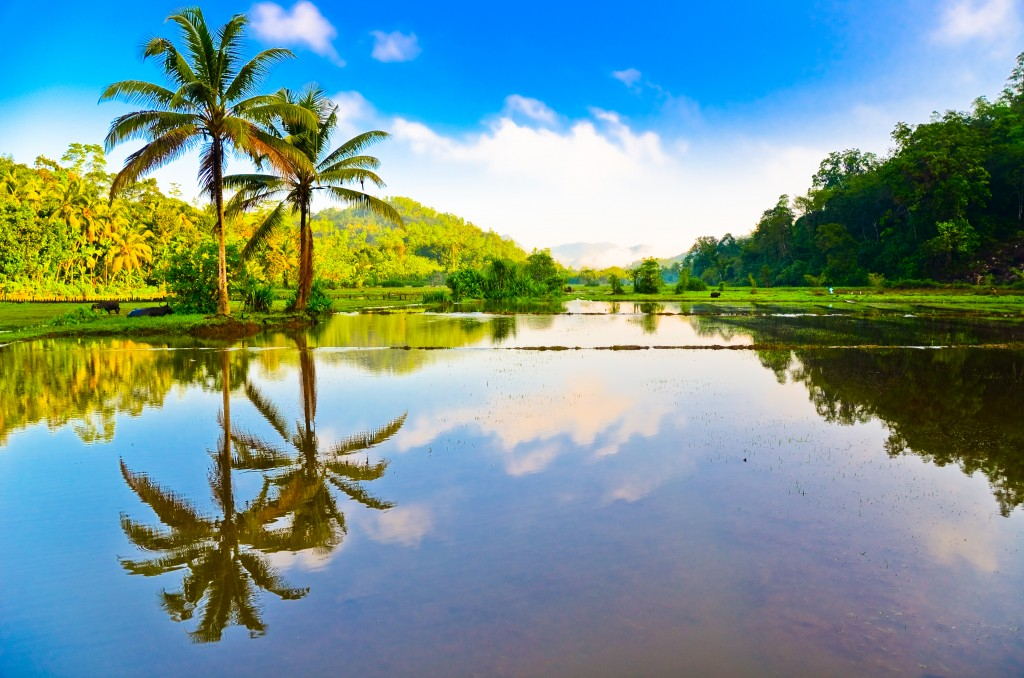 SriLanka_Colombo_BeautifulLandscape_shutterstock_129106667