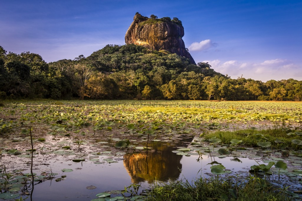 Adventure World Travel -- Hanpicked Sri Lanka Special