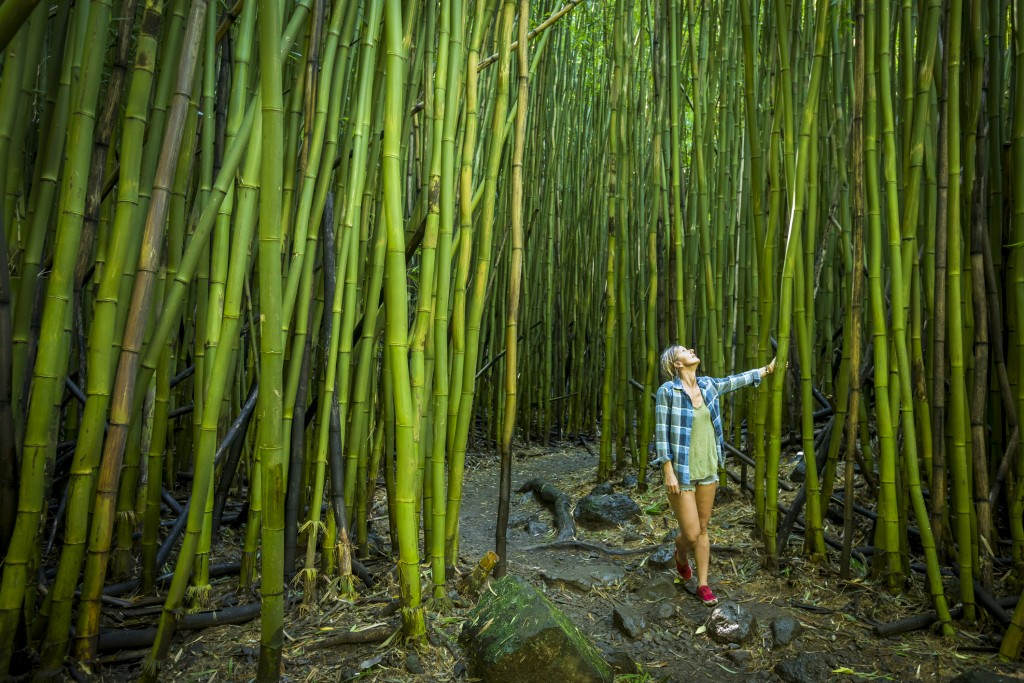 Woman walking through bamboo forest on Maui.