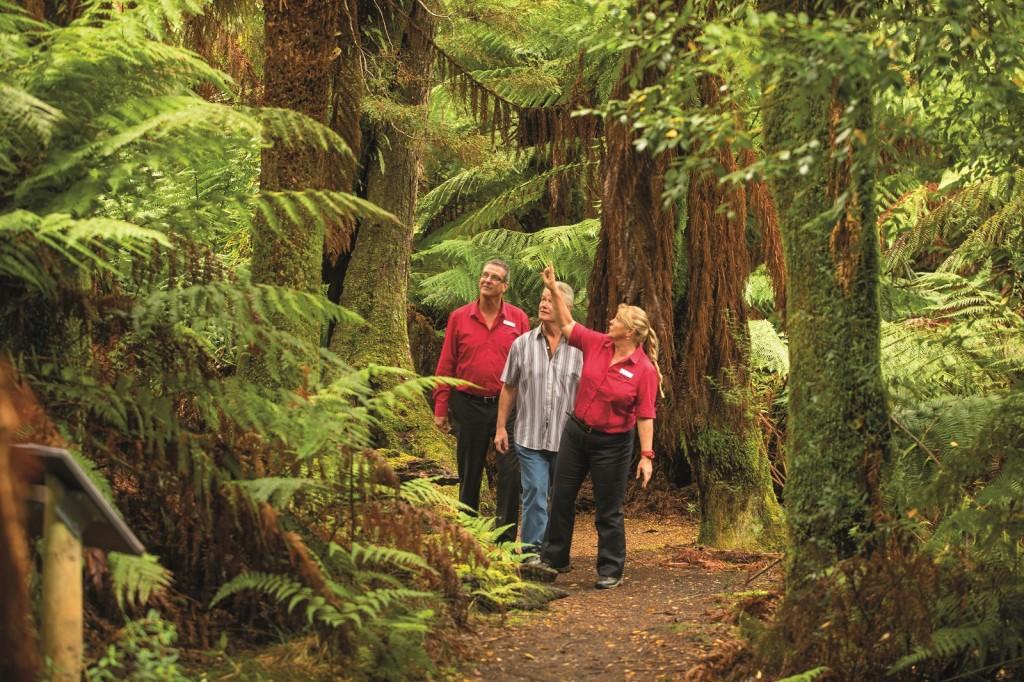AAT Kings, Tasmanian Wonders