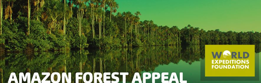 amazon_forest_appeal_g_fundraise_cmyk_newsprint