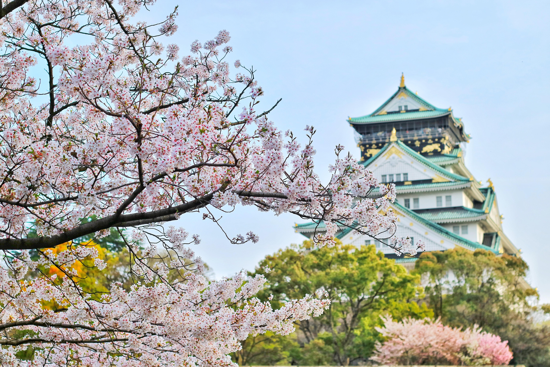 BRT_Asia_2020_Japan-Osaka-Castle