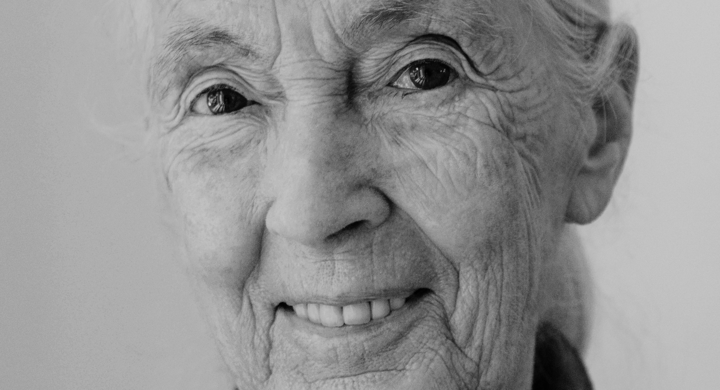 Travel DAZE 2020 speaker spotlight: Dr Jane Goodall